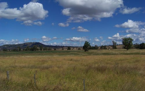 Spains Lane, Quirindi NSW 2343