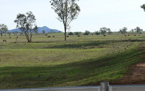 Lot 101 HEILIGMANS LANE, Tamworth NSW 2340