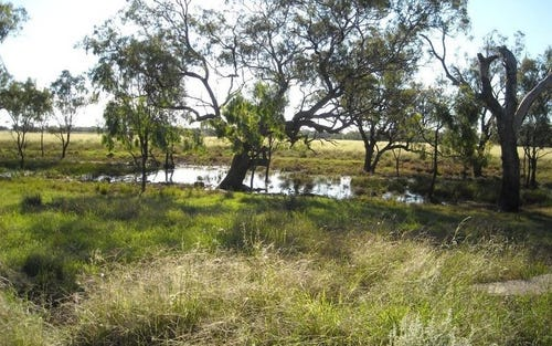 The Carbeens - Cowell Lagoon Road, Moree NSW 2400