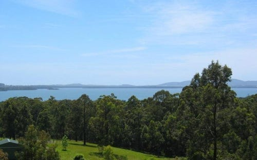 Lot 10 Lillian Sophia Pl, Pacific Palms NSW 2428