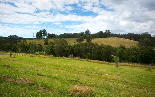 Lot 571 Wirrimbi Road, Newee Creek NSW 2447
