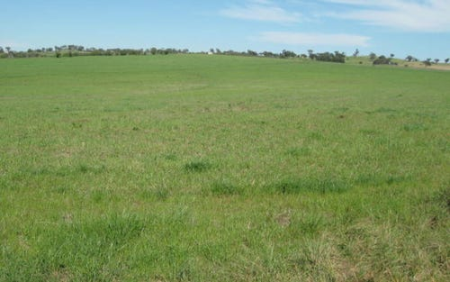 Lot 292, 292 Quamby SS Route Maimuru, Young NSW 2594