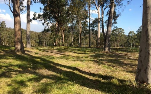 Lot 413 'Riverdowns Estate', East Seaham Road, Clarence Town NSW 2321