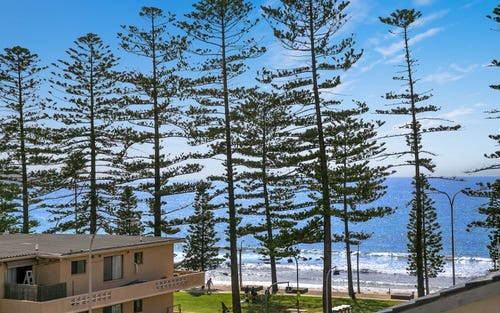 5/105 Howard Ave, Dee Why NSW