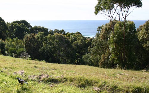 Lot 48, Becker Road, Forster NSW 2428