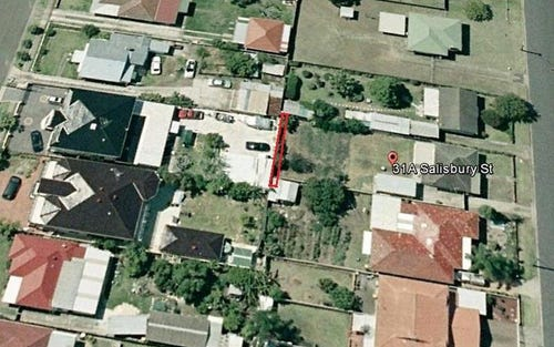 31a Salisbury St, Canley Heights NSW 2166