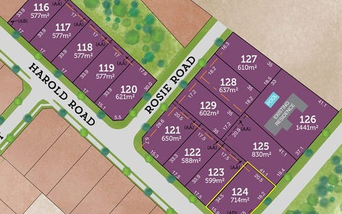 Lot 124 / 42 Rees James Road, Raymond Terrace NSW 2324