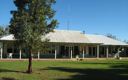 Killarney, Brewarrina NSW 2839