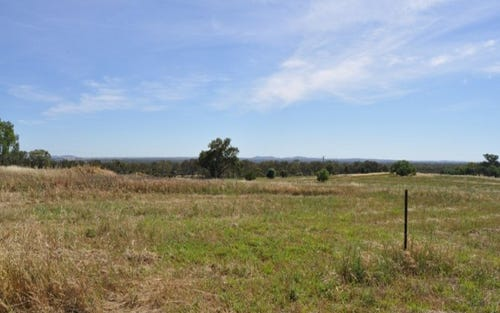 154 Black Lead Lane, Gulgong NSW 2852