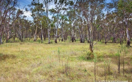 Lot 4 Panhandle Road, Uralla NSW 2358