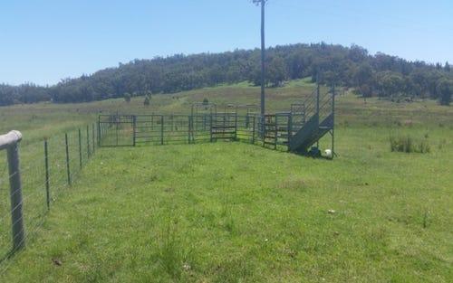 391 Stone Hut Road, Kingstown NSW 2358