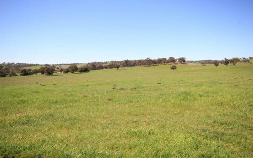 Lot 8 Hill View Estate, Gulgong NSW 2852