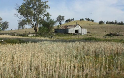 3975 Rocky Creek Road, Tenterfield NSW 2372