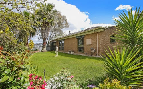 14 Dimbanna Court, Lavington NSW 2641