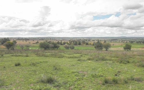 Lot 21 Tarwong Lane, Geurie, Dubbo NSW 2830