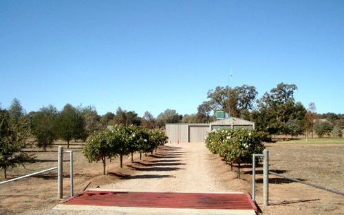 Lot 12, 12 Orange Road, Parkes NSW 2870