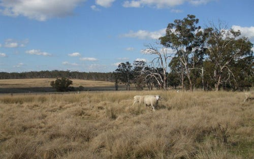 Wylie Creek, Liston NSW 2372