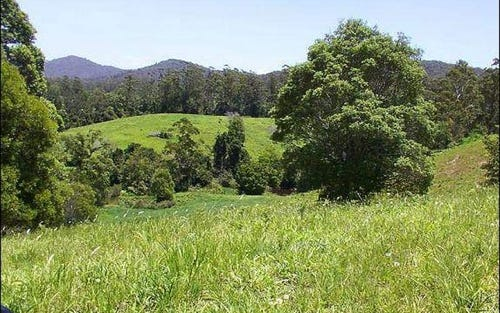 548 Kalang Road, Bellingen NSW 2454