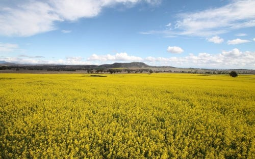Lot 35 Spains Lane, Quirindi NSW 2343