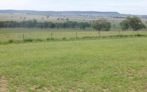 'Rosemount', Castlereagh Highway, Dunedoo NSW 2844