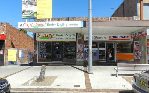 256-258 Canley Vale Rd, Canley Heights NSW 2166