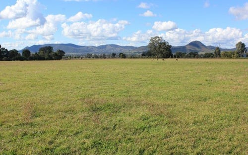 Broadhead Road, Mudgee NSW 2850