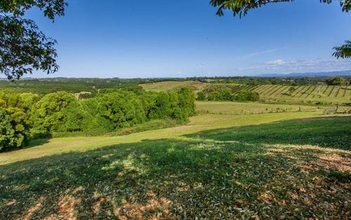599 Pearces Creek Road, Alstonvale NSW 2477