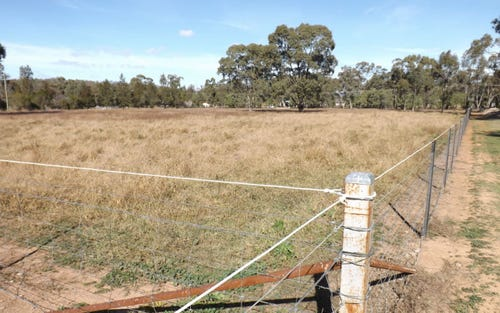 Lot 32, 38 Bushes Lane, Gunnedah NSW 2380
