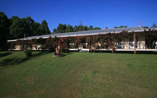 67 Welshmans Creek Road, Wallarobba NSW 2420