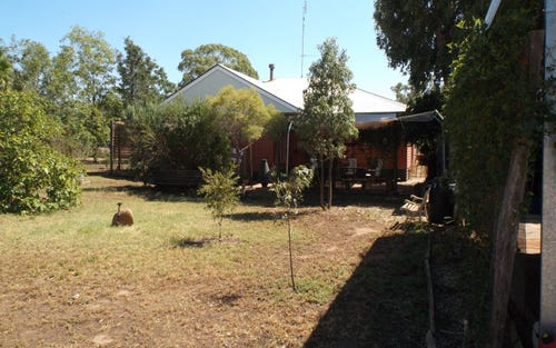 Address available on request, Pilliga NSW 2388