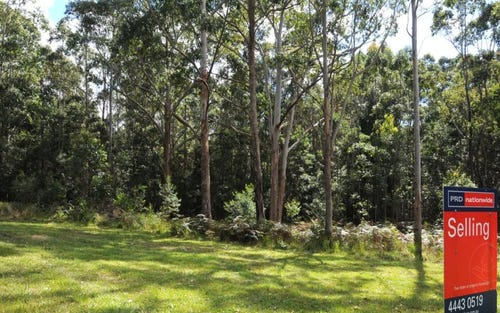 11, Lot 11 Battunga Drive, Tomerong NSW 2540