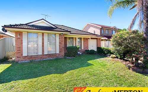 17 Hillview Place, Glendenning NSW 2761