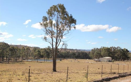 263 Mt Mackenzie Road, Tenterfield NSW 2372