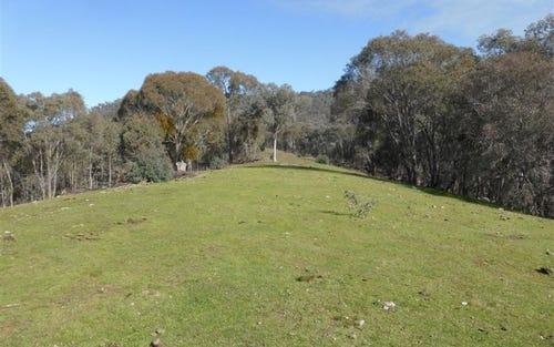 764 Linsells Road, Tumbarumba NSW 2653