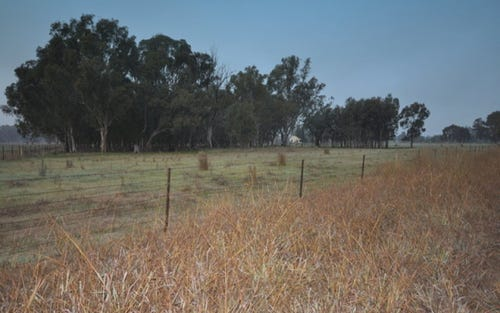 Lot 1, Cummings Road, Walla Walla NSW 2659