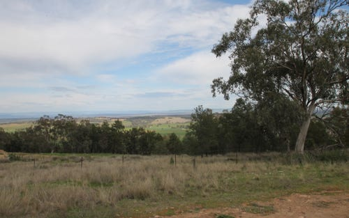 67 Ray Carter Drive, Quirindi NSW 2343