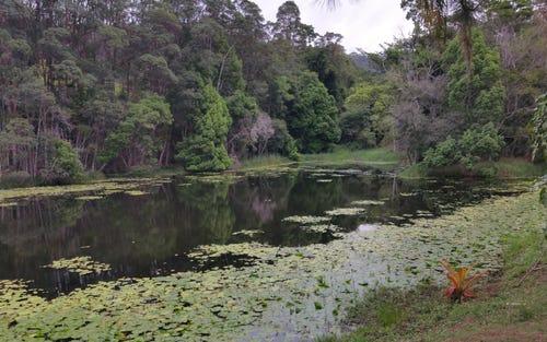 - Sleepy Hollow, Pottsville NSW
