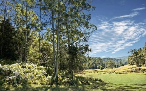 L20,73,1 Yarramalong Road, Wyong Creek NSW 2259