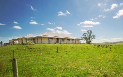 125 McClymonts Swamp Road, Wallalong NSW 2320