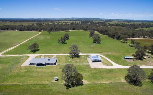 593 Spring Creek Road, Gulgong NSW 2852