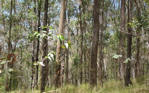 Lot 51 Mud Flat Road, Drake NSW 2469