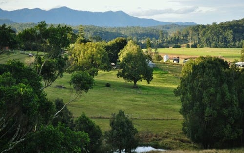 48 Old Brierfield Road, Bellingen NSW 2454