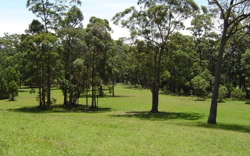 Lot 107 Spring Valley Way, Little Forest NSW 2538