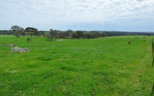 3,4,5,6 Wickham, Young NSW 2594