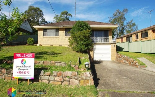 55 Wansbeck Valley Road, Cardiff NSW