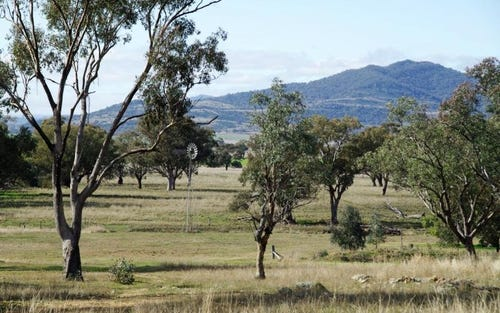 249 Borah Creek Road, Quirindi NSW 2343