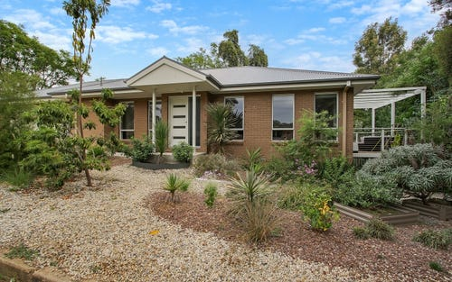 443 Percy Street, East Albury NSW