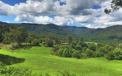 1230 Tuntable Creek Road, Nimbin NSW 2480