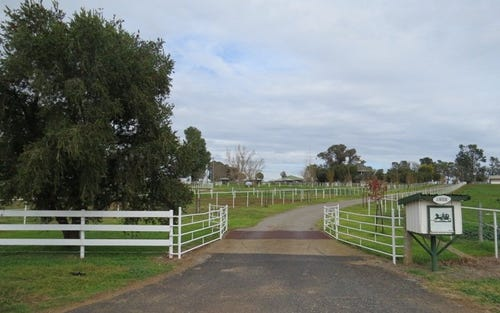 1203 Rivers Road, Canowindra NSW 2804