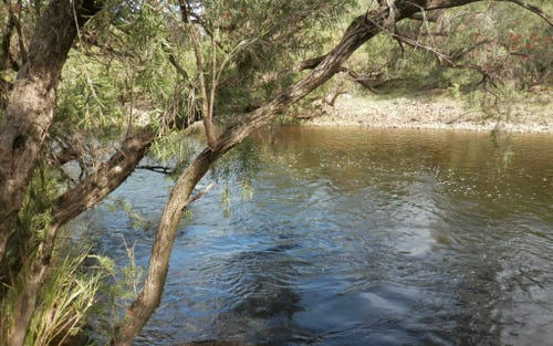 Lot 9, 1534 Paddys Flat Rd, Tabulam NSW 2469